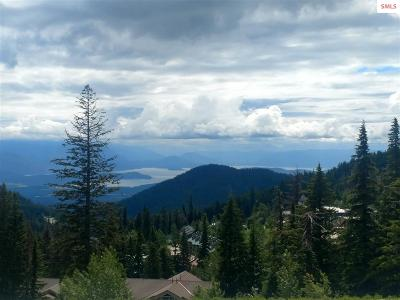 Sandpoint Residential Lots & Land For Sale: Nna Schweitzer Mountain Road