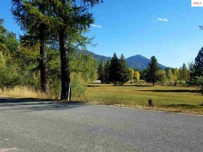 Sandpoint Residential Lots & Land For Sale: Nka Lower Pack River Rd