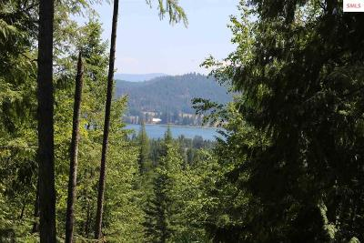 Sandpoint Residential Lots & Land For Sale: Lot 1 W Johnson Creek Road