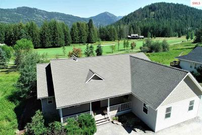 Sandpoint Single Family Home For Sale: 239 Lower Pack River