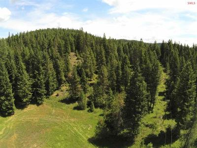 Residential Lots & Land For Sale: Lot 1 Kelso Lake Rd