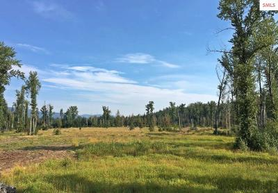 Sandpoint Residential Lots & Land For Sale: 1 Lightfoot Drive
