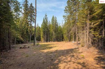 Priest Lake Residential Lots & Land For Sale: 5043 Dickensheet Rd.