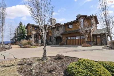 Coeur D'alene Single Family Home For Sale: 16988 S Basalt Dr