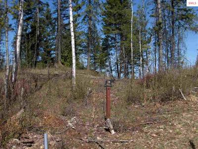 Sandpoint Residential Lots & Land For Sale: Naa Greatwater Circle