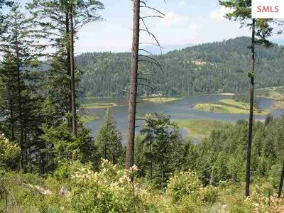 Sandpoint Residential Lots & Land For Sale: Nka Kirby Mt. Road