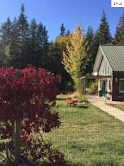 Bonner County, Boundary County, Kootenai County Single Family Home For Sale: 347 Homestead Loop
