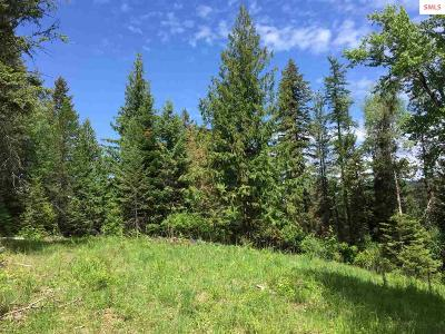 Sandpoint Residential Lots & Land For Sale: Nka Sunnyside Rd (7.95 Acres) Lot 4