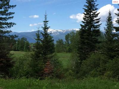 Sandpoint Residential Lots & Land For Sale: Nka E Sunnyside Rd (7.54 Acres) Lot 1