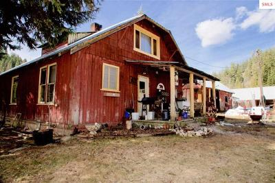 Priest River Single Family Home For Sale: 1781 Bodie Canyon Road