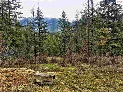 Clark Fork Residential Lots & Land For Sale: 392 Knapweed Ln.