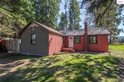 Bonner County Single Family Home For Sale: 4704 Dufort Rd