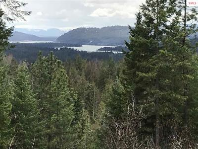Sandpoint Residential Lots & Land For Sale: 946 Homestead Loop