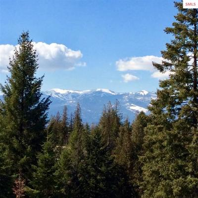 Sandpoint Residential Lots & Land For Sale: Blk 1 Lot 4 S Idaho Club Dr.