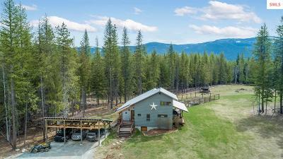 Sandpoint Single Family Home For Sale: 172 Stellar Dr.