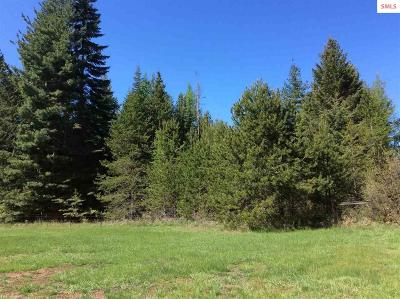 Bonners Ferry Residential Lots & Land For Sale: 823 Lost Mile Road