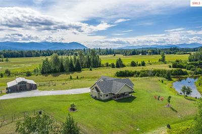 Sandpoint Single Family Home For Sale: 2500 Selle Road