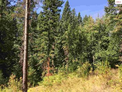 Sandpoint Residential Lots & Land For Sale: 12178 Baldy Mt Rd