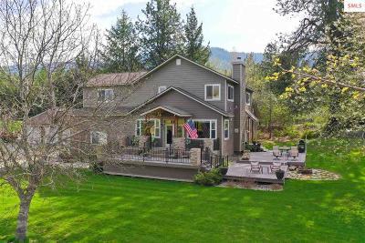 Sagle Single Family Home For Sale: 284 Comeback Bay Lane