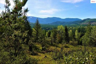 Sandpoint Residential Lots & Land For Sale: Nna Clearwood Lane