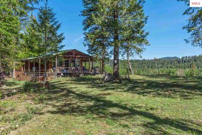 Priest River Single Family Home For Sale: 1123 Thompson Rd