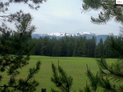 Sandpoint Residential Lots & Land For Sale: Nna Colburn Culver
