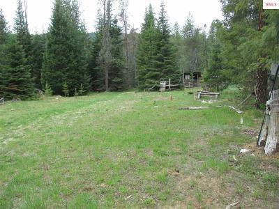 Priest River Residential Lots & Land For Sale: 3197 Lower Quartz Creek