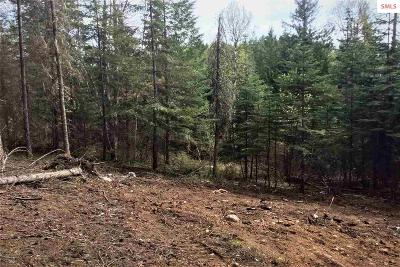 Sandpoint Residential Lots & Land For Sale: 135 Olympic