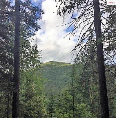 Sandpoint Residential Lots & Land For Sale: Nna Upper Pack River