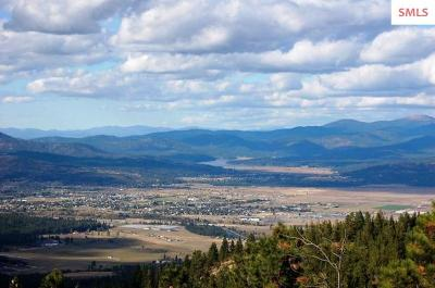Post Falls Residential Lots & Land For Sale: Big Rock Rd.