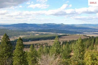 Post Falls Residential Lots & Land For Sale: Big Rock Road