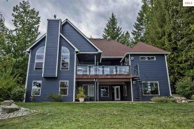 Dover  Single Family Home For Sale: 10371 Ontario Street