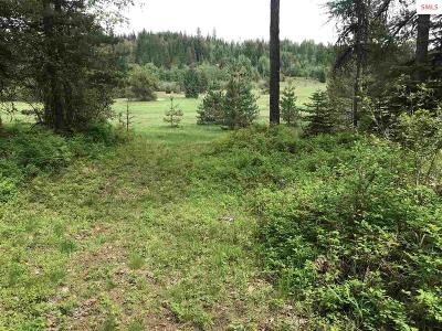Sandpoint Residential Lots & Land For Sale: 1195 Hidden Valley Road