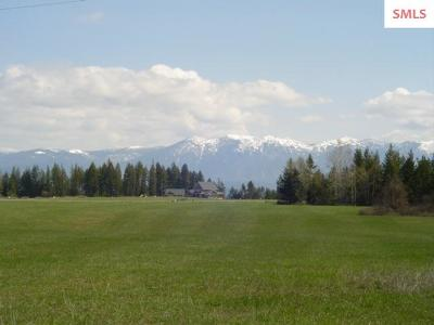 Bonners Ferry Residential Lots & Land For Sale: 176 Stellar Jay Rd.