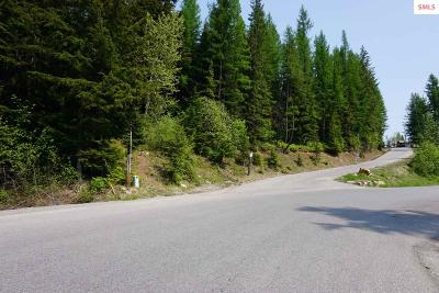 Sandpoint Residential Lots & Land For Sale: Nna Parallel Run Lot 9