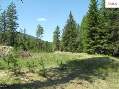 Sandpoint Residential Lots & Land For Sale: 1 Justice Ct.