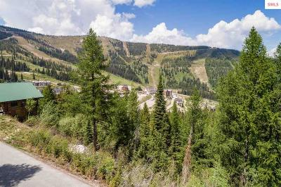 Sandpoint Residential Lots & Land For Sale: Nka Mogul Hill
