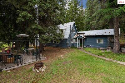 Priest Lake Single Family Home For Sale: 28013 Highway 57