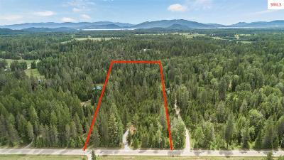 Sandpoint ID Residential Lots & Land For Sale: $199,000