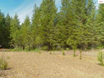Priest River ID Residential Lots & Land For Sale: $60,000
