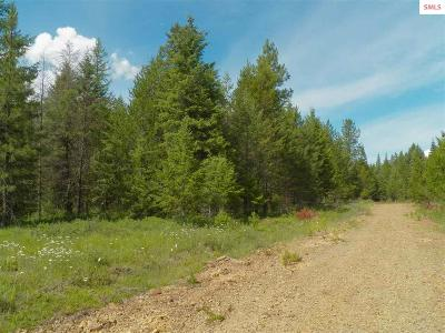 Priest River ID Residential Lots & Land For Sale: $65,000
