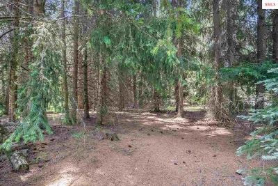 Sandpoint Residential Lots & Land For Sale: Nka Park Lane