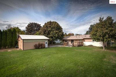 Hayden Single Family Home For Sale: 320 E Dakota Ave