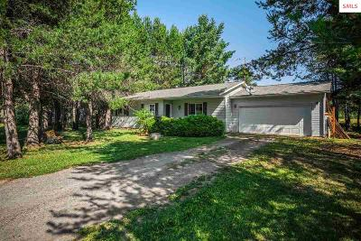 Sandpoint Single Family Home For Sale: 167 Jeffrey