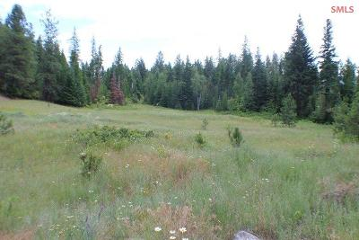 Bonners Ferry Residential Lots & Land For Sale: Lot 37 Meadow Creek Estates