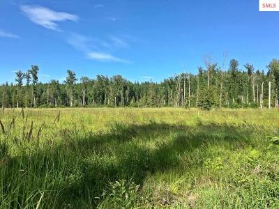 Sandpoint Residential Lots & Land For Sale: 3 Lightfoot Drive