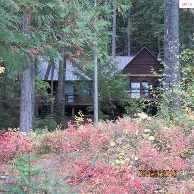 Bonner County Single Family Home For Sale: 1591 W Priest Lake Shore