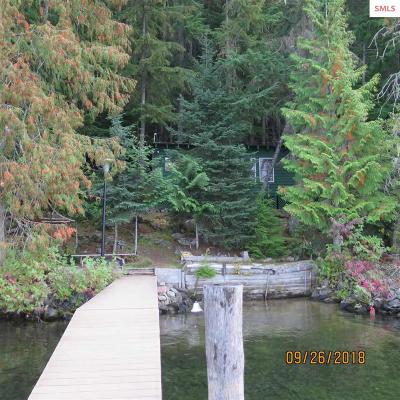 Bonner County Single Family Home For Sale: 1195 W Priest Lake Shore