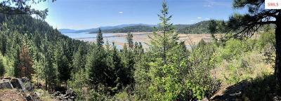 Sandpoint Residential Lots & Land For Sale: Nka Kirby Mt. (9.59acres)
