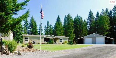Rathdrum Single Family Home For Sale: 20300 N Hope Valley Road